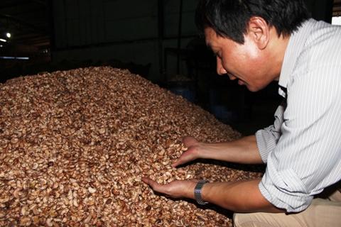 Xóa bỏ 8.320 dòng thuế đối với hàng hóa xuất xứ từ Hàn Quốc